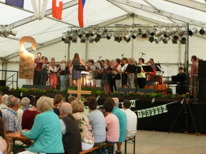 WEB57Stadtfest-2017-(57)